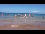Гавайские острова!!!в сердце тихого океана!