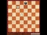 Мини-курс по эндшпилю  Дмитрия Гриценко.  3.Классические примеры Король и  Пешка против Короля